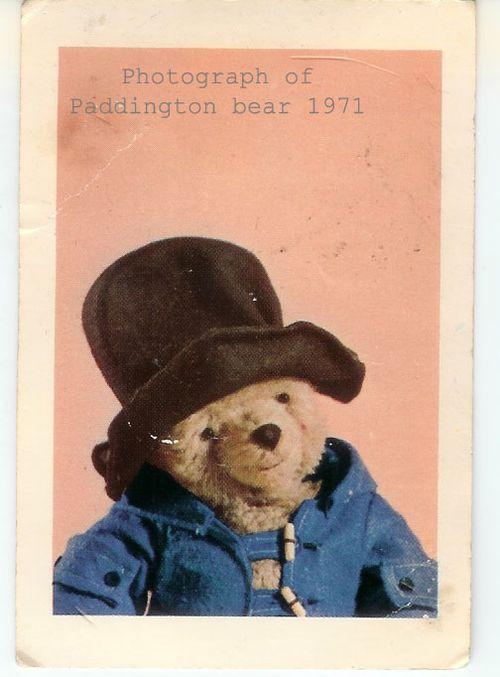 Photograph of Paddington Bear